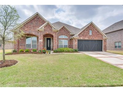 Frisco Single Family Home For Sale: 1241 Twin Harbors Drive