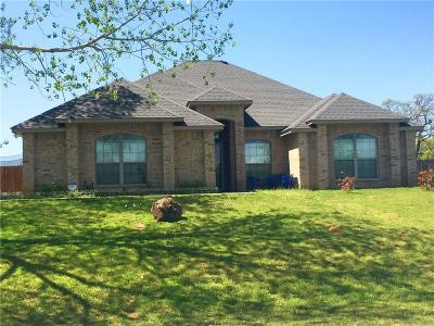 Parker County Single Family Home For Sale: 108 Nicole Lane