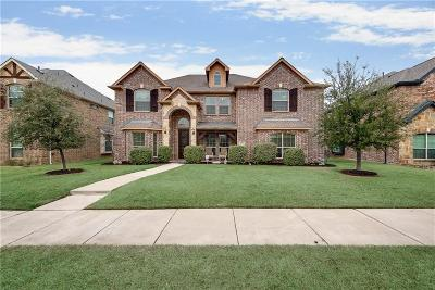 Denton County Single Family Home For Sale: 3572 Bellaire Court