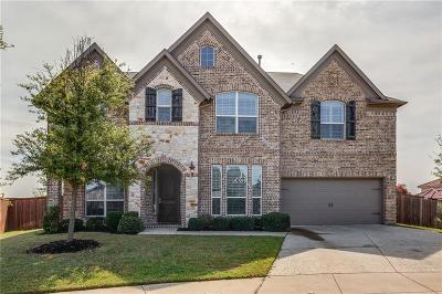 Frisco Single Family Home For Sale: 6508 Excelsior Place