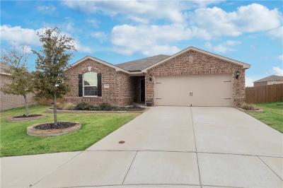 Princeton Single Family Home For Sale: 220 Soap Tree Drive
