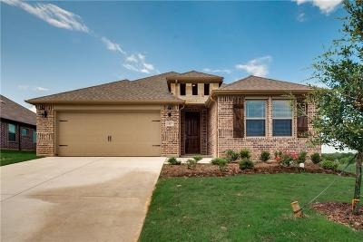 Parker County Single Family Home For Sale: 1517 Town Creek Circle