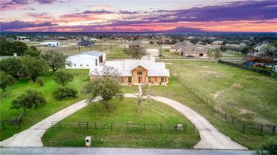 Parker County Farm & Ranch For Sale: 216 Megan Court