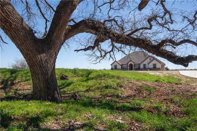 Parker County Single Family Home For Sale: 909 Friendship Road