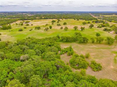 Weatherford Farm & Ranch For Sale: Tbd Bellenger