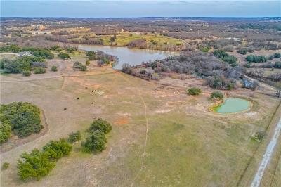 Weatherford Farm & Ranch For Sale: 2357 Advance Road