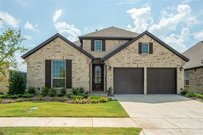 Little Elm Single Family Home For Sale: 5204 Shallow Pond Drive
