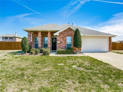 Rockwall Single Family Home For Sale: 3078 Stoney Hollow Lane