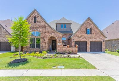 Allen Single Family Home For Sale: 2009 Pear Tree Drive