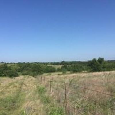 Wise County Farm & Ranch For Sale: 00 Fm 730