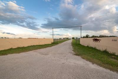Cooke County Farm & Ranch For Sale: County Rd 2120