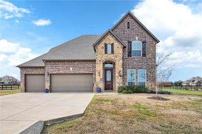 McKinney Single Family Home For Sale: 7818 Meadow Grove Drive