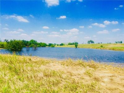 Denton County Residential Lots & Land For Sale: Lot 24 Hackamore Court