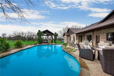Grayson County Single Family Home For Sale: 744 Reed Lane
