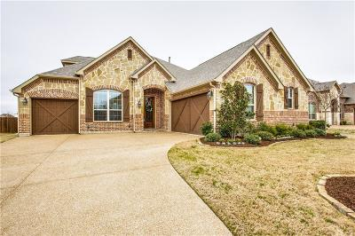 Rowlett Single Family Home For Sale: 10101 Edgeway Circle