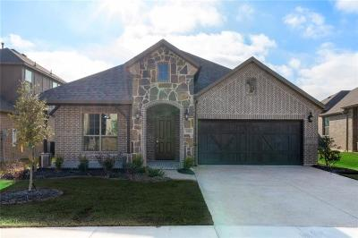 Rockwall Single Family Home For Sale: 1601 Mannheim Drive