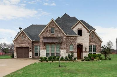 Prosper Single Family Home For Sale: 8967 Prestonview Drive