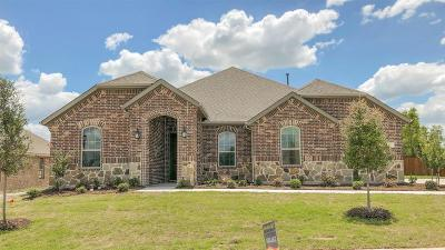 Rockwall Single Family Home For Sale: 3209 San Marcos Drive