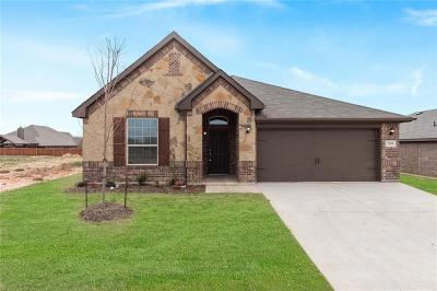 Parker County Single Family Home For Sale: 2549 Silver Fox Trail