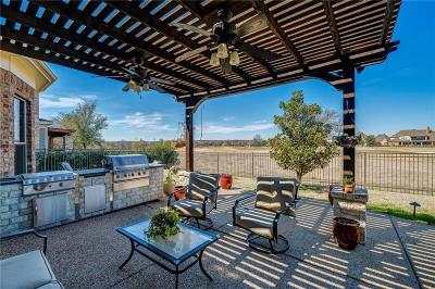 Denton County Single Family Home For Sale: 8331 Navisota Drive