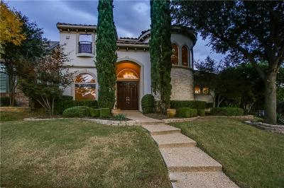 Plano Single Family Home For Sale: 6700 Prairie View Lane