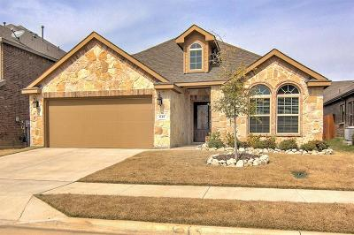 Little Elm Single Family Home For Sale: 613 Lake Sierra Way
