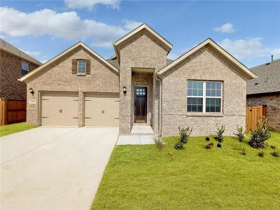 Prosper Single Family Home For Sale: 5420 Mustang Lane