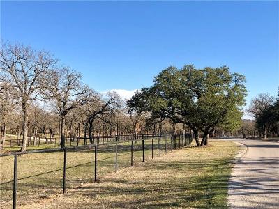 Parker County Residential Lots & Land For Sale: 121 Silver Saddle Circle