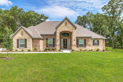 Denton County Single Family Home For Sale: 135 Spanish Oak Drive