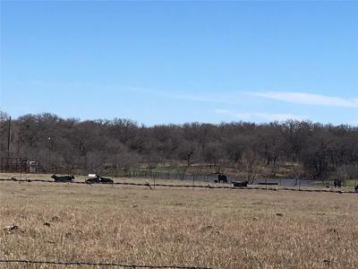 Comanche County Farm & Ranch For Sale: Tbd County Rd 426