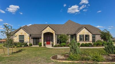 Parker County Single Family Home For Sale: 171 Solano Circle