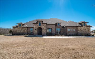 Rockwall Single Family Home For Sale: 619 Chisholm Ranch Drive