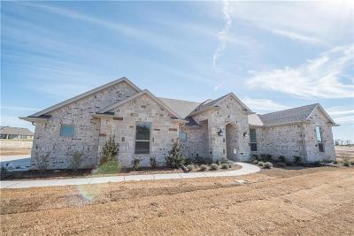 Parker County Single Family Home For Sale: 234 Columbia Court