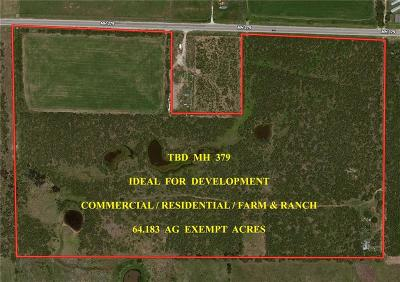 Mineral Wells Farm & Ranch For Sale: Tbd Mh 379