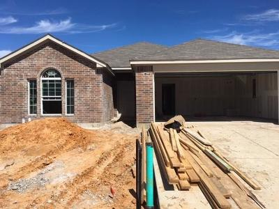 Fort Worth Single Family Home For Sale: 1409 Gallina Trail