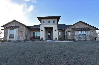 Parker County Single Family Home For Sale: 109 Maravilla Drive