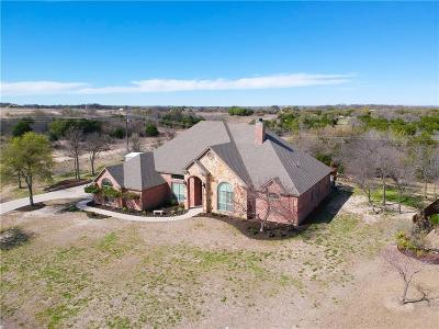 Parker County Single Family Home For Sale: 230 Deer Creek Drive