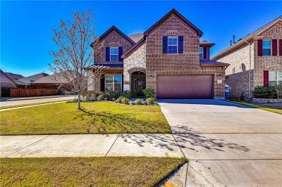 Little Elm Single Family Home For Sale: 2698 Calmwood Drive