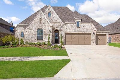 Little Elm Single Family Home For Sale: 7025 Cross Point Lane