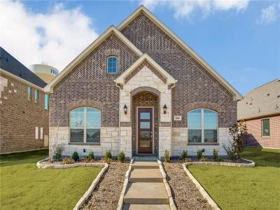Frisco Single Family Home For Sale: 6141 Hall Road