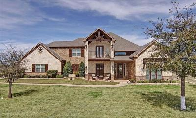 Palo Pinto County Single Family Home For Sale: 3216 Shooting Star Court