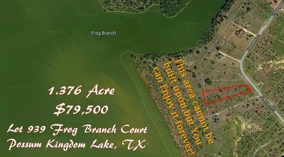 Palo Pinto County Residential Lots & Land For Sale: Lt 939 Frog Branch Court