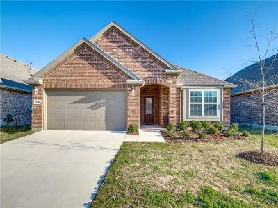 Little Elm Single Family Home For Sale: 925 Lake Woodland Drive