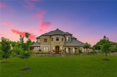 Parker County Single Family Home For Sale: 151 Crooked Creek Lane