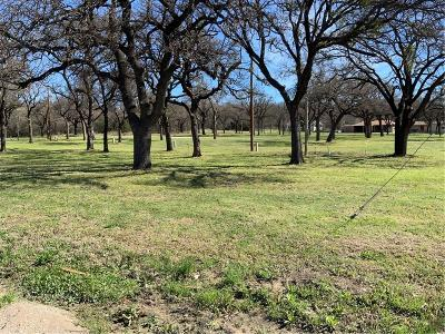 Mineral Wells TX Commercial Lots & Land For Sale: $349,000