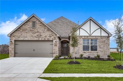 Tarrant County Single Family Home For Sale: 5208 SE Sonata Trail