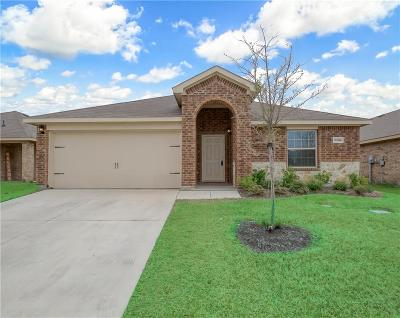 Forney Single Family Home For Sale: 2205 Torch Lake Drive