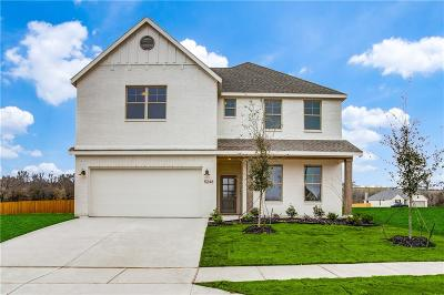 Tarrant County Single Family Home For Sale: 5248 Sontana Trail