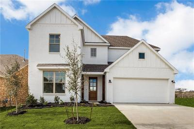 Tarrant County Single Family Home For Sale: 9805 Chaparral Pass