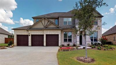 Plano Single Family Home For Sale: 1820 Amazon Drive